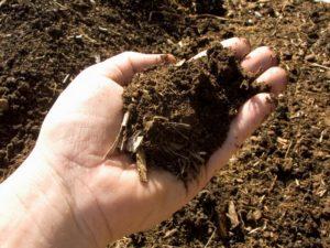 Компост. Использование садовых и бытовых отходов на участке.2