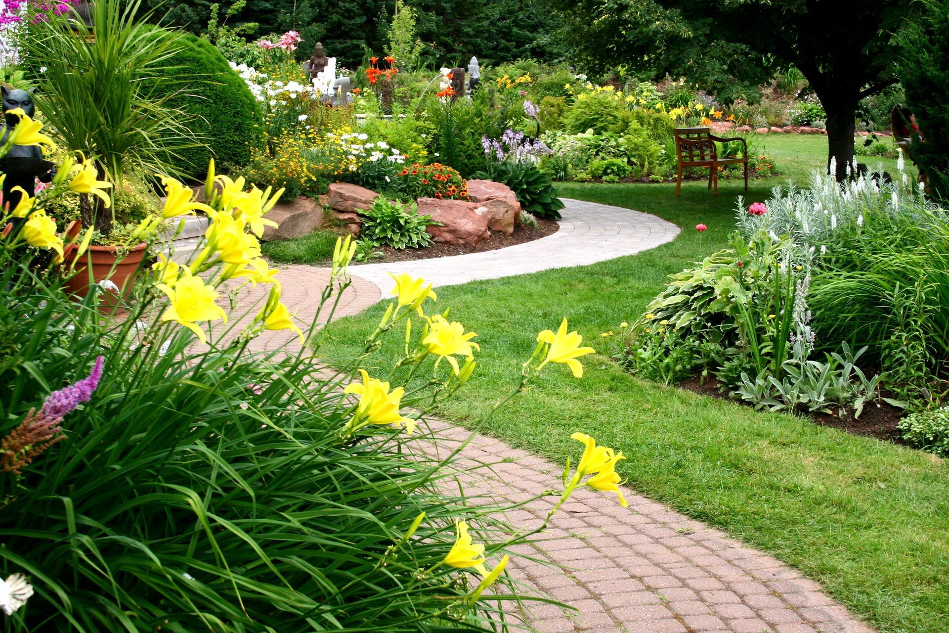 Дизайн цветников и газонов фото что