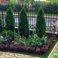 Озеленение, живые изгороди и крупномеры 12