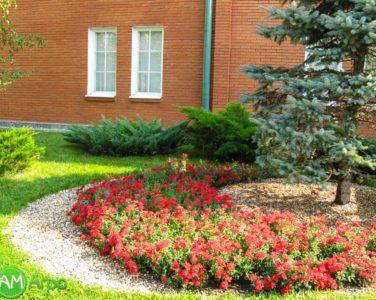 Альпинарии, сухие ручьи и цветники