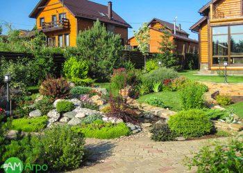 Альпинарии, сухие ручьи и цветники 2
