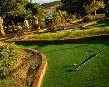 Мини-гольф поля