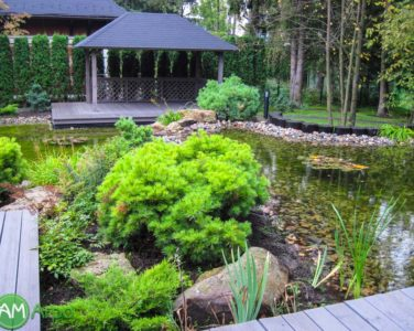Декоративные водоемы и пруды 54