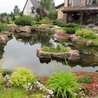 Экостиль (natur garden) в ландшафтном дизайне 1
