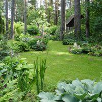 Экостиль (natur garden) в ландшафтном дизайне 2
