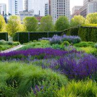 Экостиль (natur garden) в ландшафтном дизайне 4