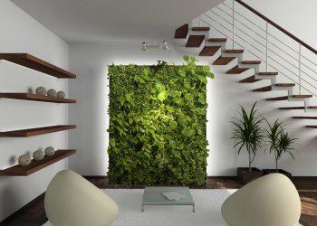 Озеленение офиса 26