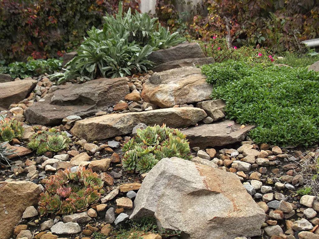 склон с камнями в ландшафтном дизайне фото птичкой можно украсить