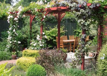 backyard-garden-with-wooden-furniture-and-red-pergola-min