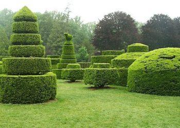 Topiary-min